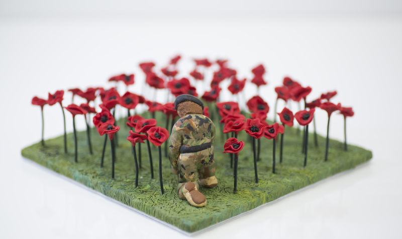 Poppy Field with soldier
